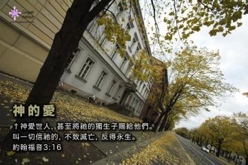 3 Autumn 02a