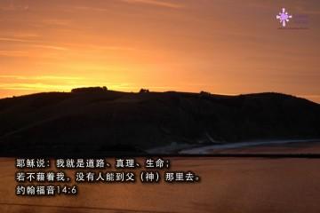 NNZ2006-04-24_102