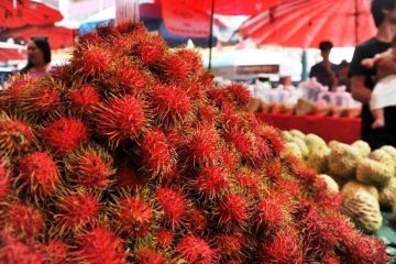 red fruits Thai