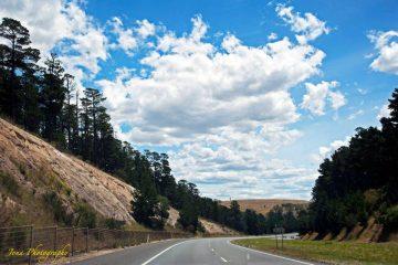 jona-winding-road