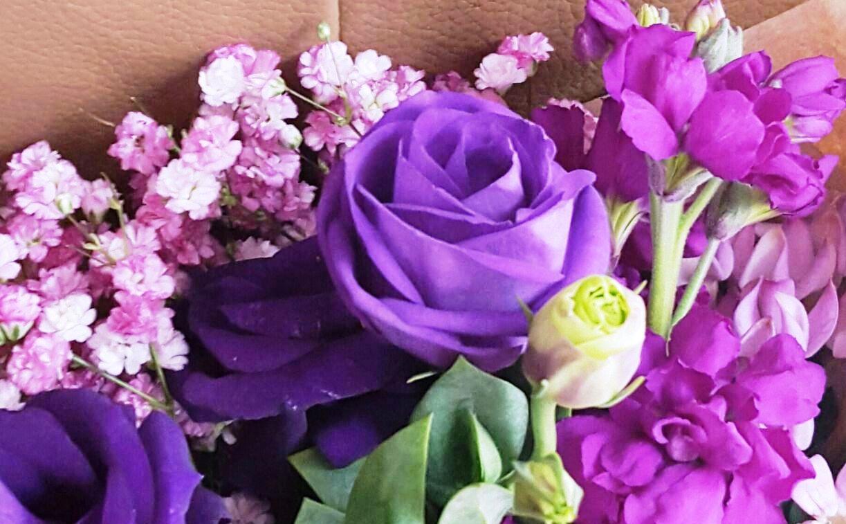 Flora Purple Rob 3